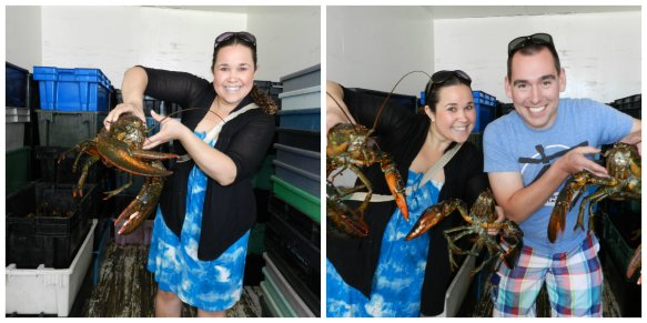 Holding the lobsters