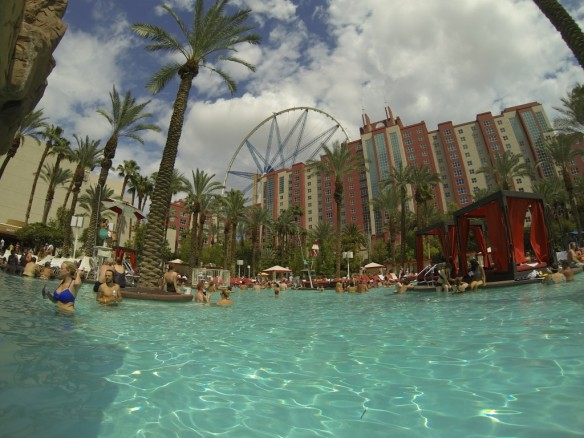 Flamingo Hotel Pool