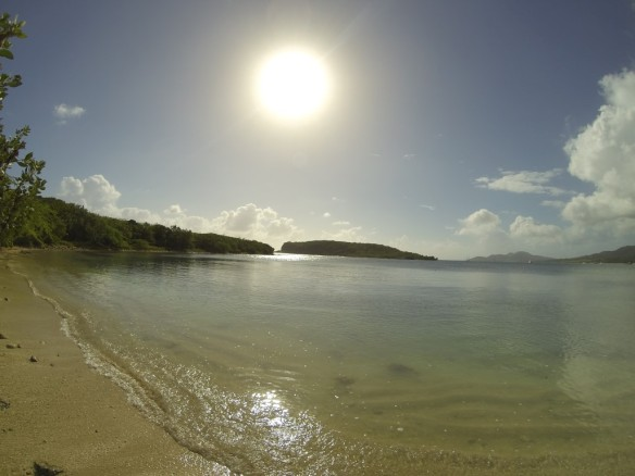 Vieques