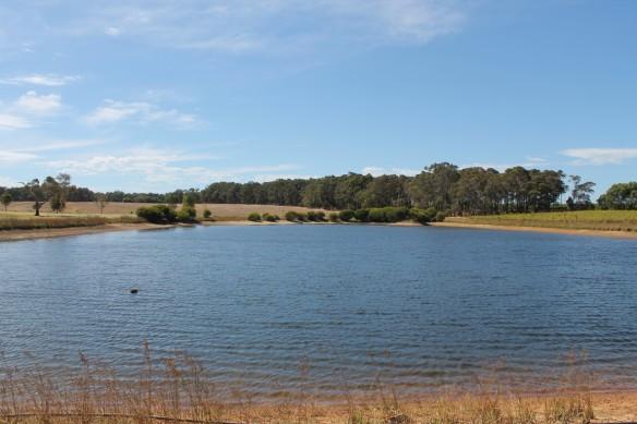 Margaret River Landscape