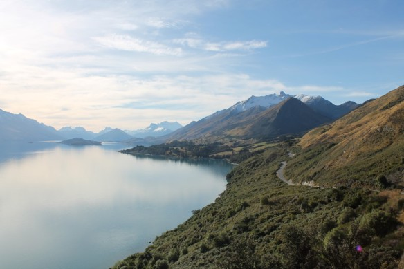 View of Mount Aspiring National Park
