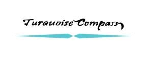 turquoise compass watermark