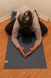 Dusky Leaf Yoga